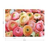 Fototapeta - Flowers Peonies 2 Vliesová tapeta  - 208x146 cm