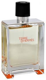 Hermes Terre D´ Hermes - EDT TESTER 100 ml