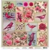 Papír 30,5x30,5 - Birds of Paradise - Birds of Paradise Birds  91437