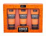 Šampon Xpel - Ginger 100 ml