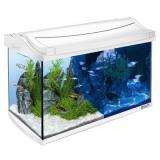 Tetra AquaArt LED akvarijní set 60 l - bílý - Rozměr: D 61,5 x Š 34 x V 43 cm