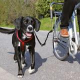 Trixie Vodící set na kolo de Luxe - držák na kolo