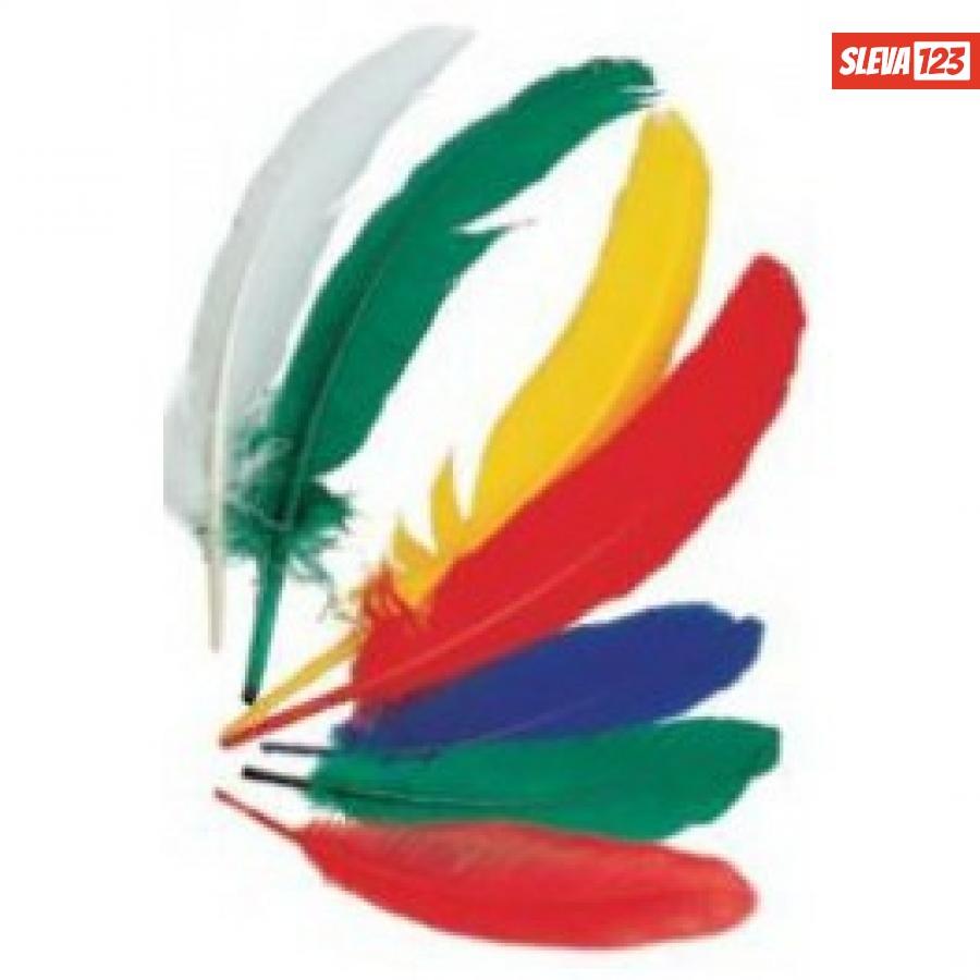Indiánská brka střední 15-22 cm - Barevný mix 12 ks  36413