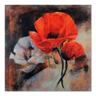 Deco Panel - Poppies - Still Life 80x80 cm