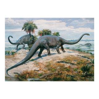 Dino Puzzle 1000 Dílků Dinosaurs
