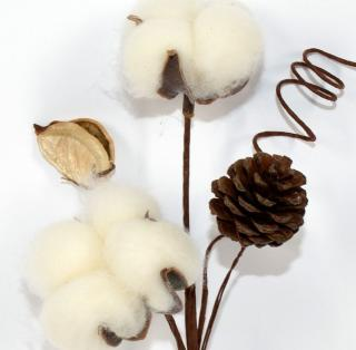 DUE ESSE Vánoční dekorace květ bavlny se šiškou, 23 cm
