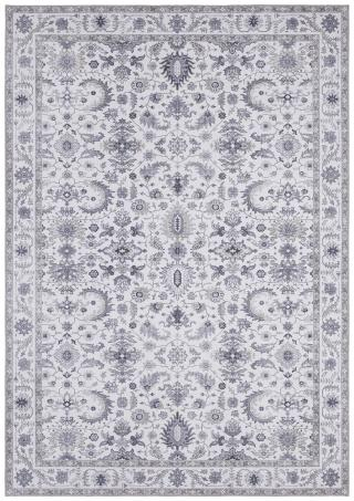 Nouristan - Hanse Home koberce Kusový koberec Asmar 104006 Platinum/Grey - 160x230 cm Šedá