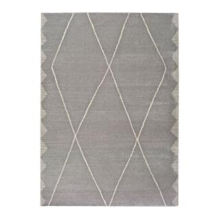 Šedý koberec Universal Tanum Duro, 120 x 170 cm