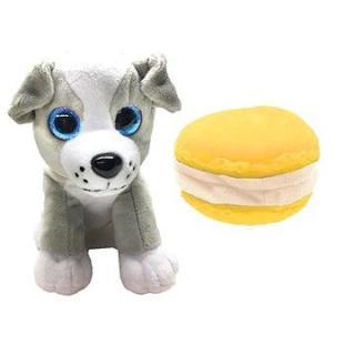 Sweet Pups Rex
